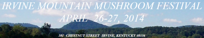 Irvine Mountain Banner