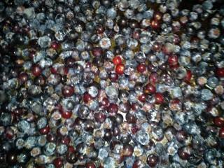 Juneberries closeup frz