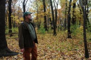 rob woods